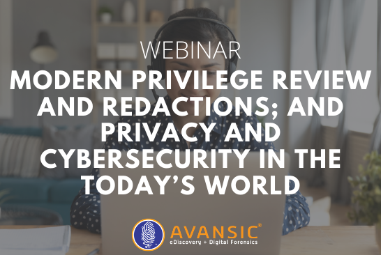 Modern Privilege Review and Redactions; and Privacy and Cybersecurity in the Today's World